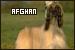 Dog Breeds: Afghan Hounds